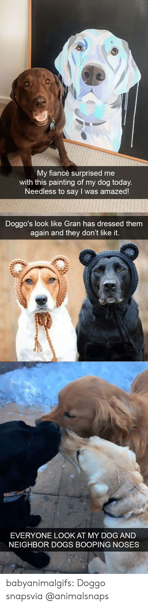 Dont Like It: My fiancé surprised me  with this painting of my dog today  Needless to say I was amazed!   Doggo's look like Gran has dressed them  again and they don't like it.   EVERYONE LOOK AT MY DOG AND  NEIGHBOR DOGS BOOPING NOSES babyanimalgifs:  Doggo snapsvia @animalsnaps