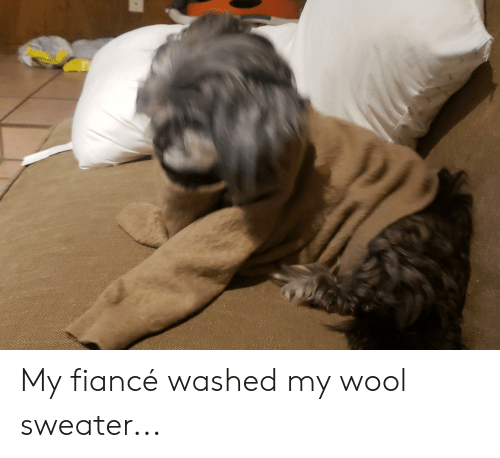 Fiance, Wool, and Sweater: My fiancé washed my wool sweater...