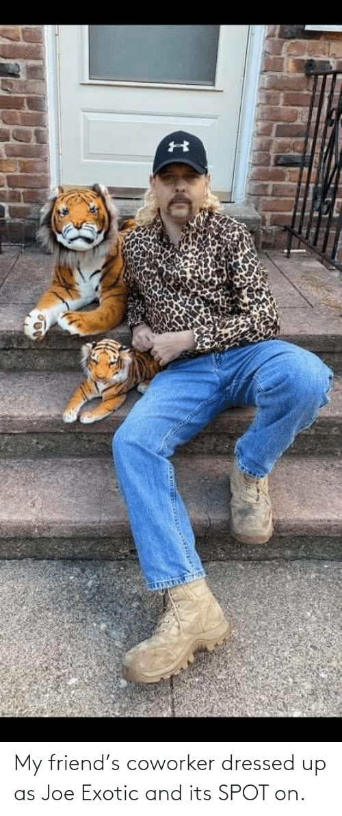 Dressed Up: My friend's coworker dressed up as Joe Exotic and its SPOT on.