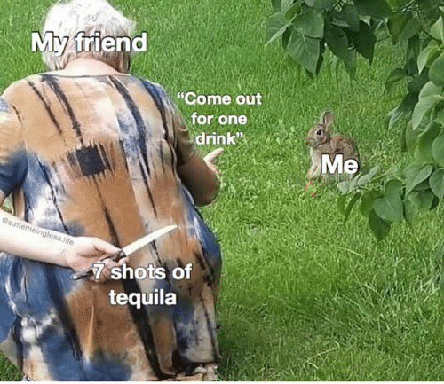 "Life, Tequila, and One: My friend  ""Come out  for one  drink  Me  @a.memeingless.life  7 shots of  tequila"
