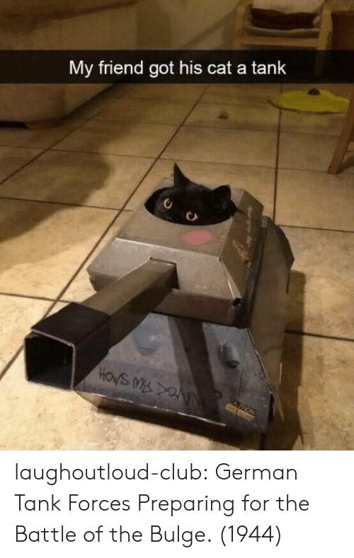 cation: My friend got his cat a tank  HOWS M NN  CATION laughoutloud-club:  German Tank Forces Preparing for the Battle of the Bulge. (1944)