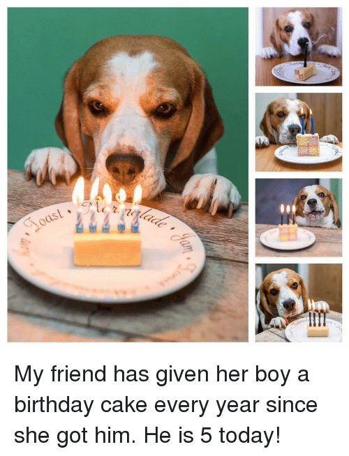 Birthday, Cake, and Today