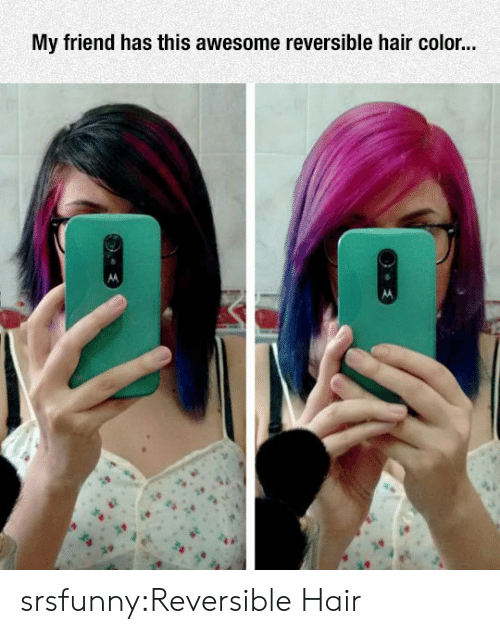hair color: My friend has this awesome reversible hair color.. srsfunny:Reversible Hair