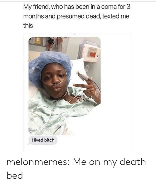 I Lived Bitch: My friend, who has been in a coma for 3  months and presumed dead, texted me  this  I lived bitch melonmemes:  Me on my death bed