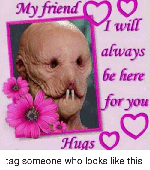 Tag Someone Who Looks Like This: My friend  will  always  be here  for you  O  Hugs tag someone who looks like this