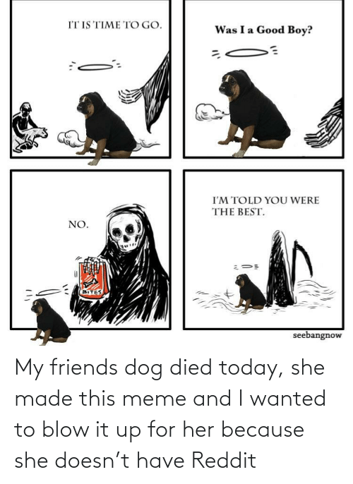 blow: My friends dog died today, she made this meme and I wanted to blow it up for her because she doesn't have Reddit