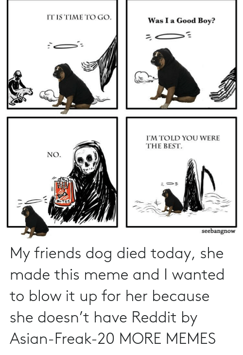 freak: My friends dog died today, she made this meme and I wanted to blow it up for her because she doesn't have Reddit by Asian-Freak-20 MORE MEMES