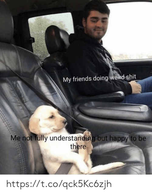 Friends, Memes, and Shit: My friends doing weird shit  Me not fully understanding but happy to be  there https://t.co/qck5Kc6zjh