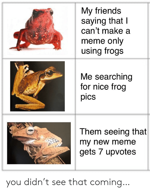 New Meme: My friends  saying that I  can't make a  meme only  using frogs  Me searching  for nice frog  pics  Them seeing that  my new meme  gets 7 upvotes you didn't see that coming…