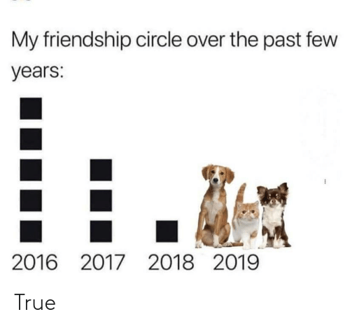 True, Friendship, and Circle: My friendship circle over the past few  years:  2016 2017 2018 2019 True