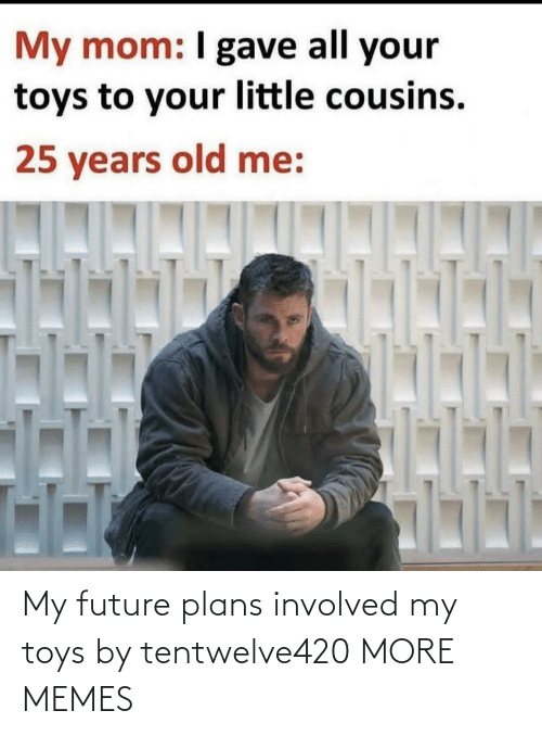 Future: My future plans involved my toys by tentwelve420 MORE MEMES
