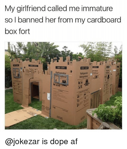 Af, Dope, and Girlfriend: My girlfriend called me immature  so I banned her from my cardboard  box fort  orator  rateur @jokezar is dope af