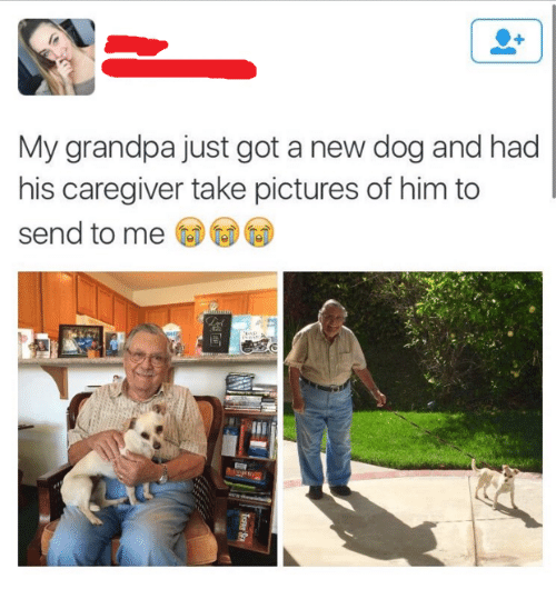 Caregiver: My grandpa just got a new dog and had  his caregiver take pictures of him to  send to me