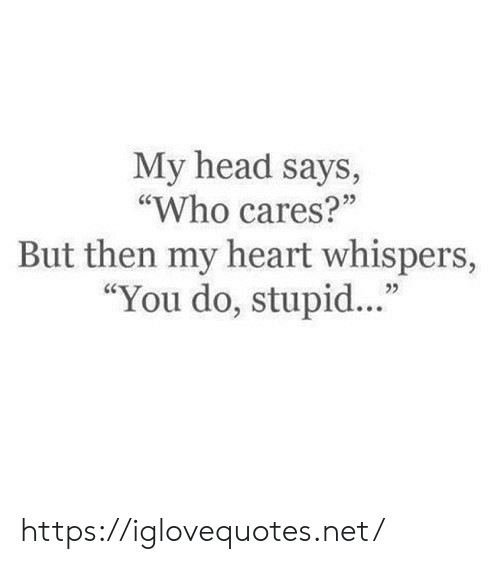 """Says Who: My head says,  """"Who cares?""""  But then my heart whispers,  """"You do, stupi. https://iglovequotes.net/"""