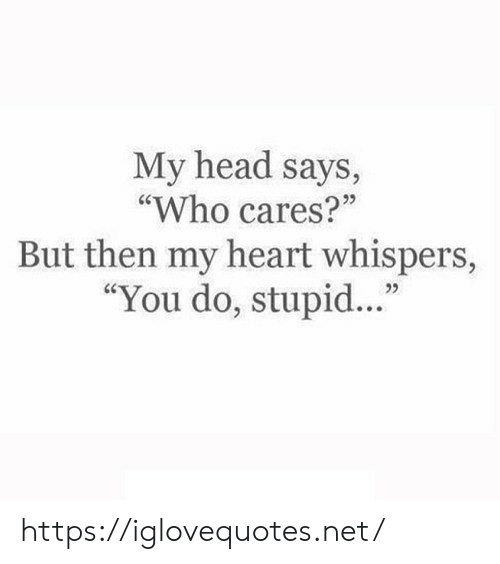 """Head, Heart, and Net: My head says,  """"Who cares?""""  But then my heart whispers,  """"You do, stupid.."""" https://iglovequotes.net/"""