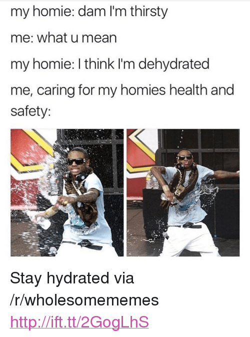 """Homie, Thirsty, and Http: my homie: dam I'm thirsty  me: what u mearn  my homie: I think I'm dehydrated  me, caring for my homies health and  safety: <p>Stay hydrated via /r/wholesomememes <a href=""""http://ift.tt/2GogLhS"""">http://ift.tt/2GogLhS</a></p>"""