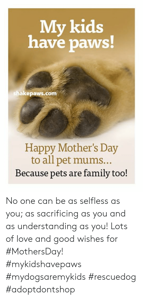 Family, Love, and Memes: My kids  have paws  shakepaws.com  Happy Mother's Day  to all pet mums..  Because pets are family too! No one can be as selfless as you; as sacrificing as you and as understanding as you! Lots of love and good wishes for #MothersDay!  #mykidshavepaws #mydogsaremykids #rescuedog #adoptdontshop