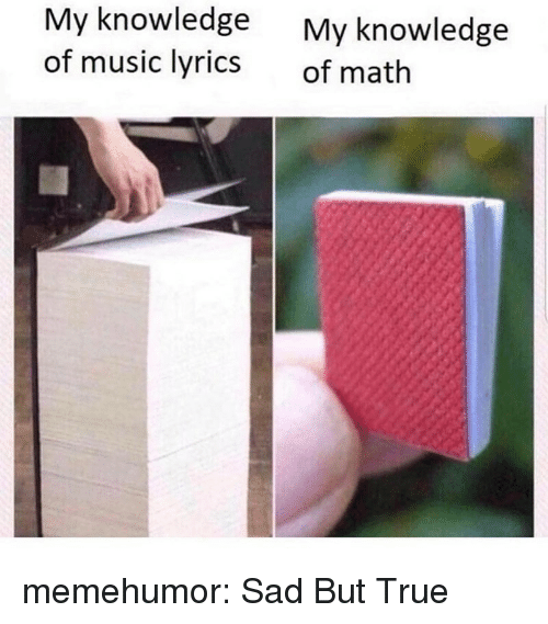 Music, True, and Tumblr: My knowledge  of music lyrics  My knowledge  of math memehumor:  Sad But True