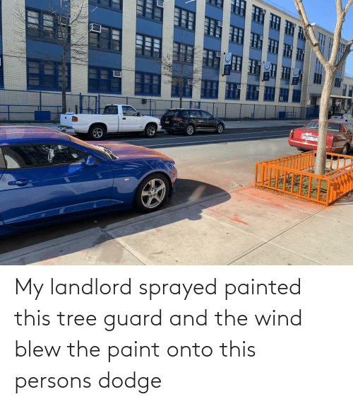 Dodge: My landlord sprayed painted this tree guard and the wind blew the paint onto this persons dodge