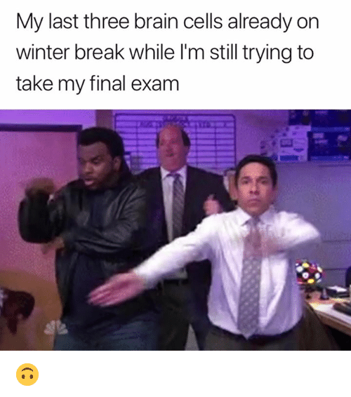 Winter Break: My last three brain cells already on  winter break while l'm still trying to  take my final exam 🙃