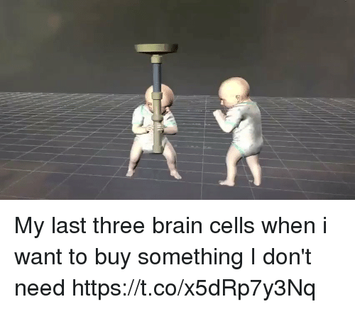 Brain, Girl Memes, and Three: My last three brain cells when i want to buy something I don't need https://t.co/x5dRp7y3Nq