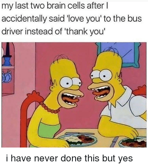 Love, Memes, and Thank You: my last two brain cells after l  accidentally said 'love you' to the bus  driver instead of 'thank you i have never done this but yes