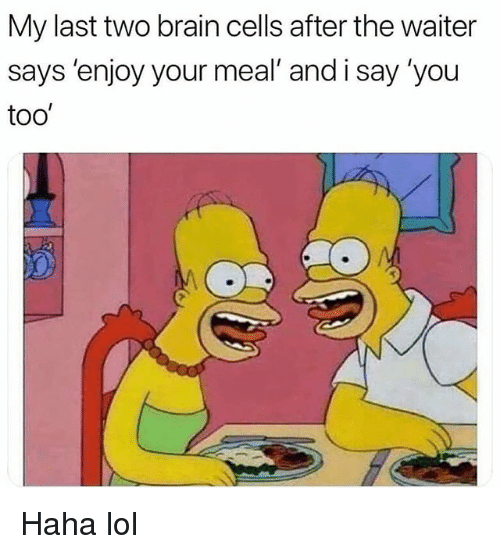 Haha Lol: My last two brain cells after the waiter  says 'enjoy your meal' and i say 'you  too Haha lol