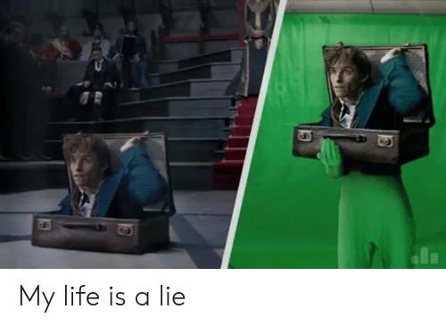 My Life Is A: My life is a lie