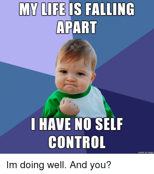 Life Is Falling Apart: MY LIFE IS FALLING  APART  I HAVE NO SELF  CONTROL  made on imgur Im doing well. And you?