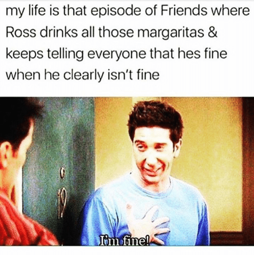 Friends, Life, and Relationships: my life is that episode of Friends where  Ross drinks all those margaritas &  keeps telling everyone that hes fine  when he clearly isn't fine