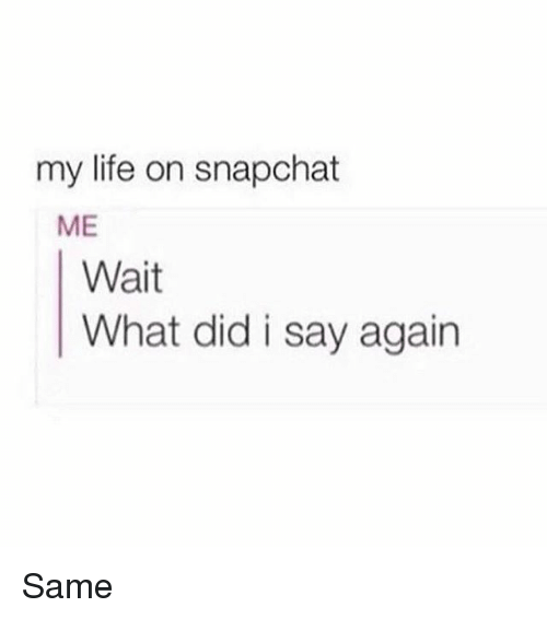 Life, Memes, and Snapchat: my life on snapchat  ME  Wait  What did i say again Same