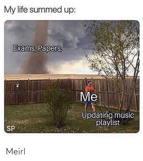 Summed Up: My life summed up:  Exams, Papers,  Me  Updating music  playlist  SP Meirl