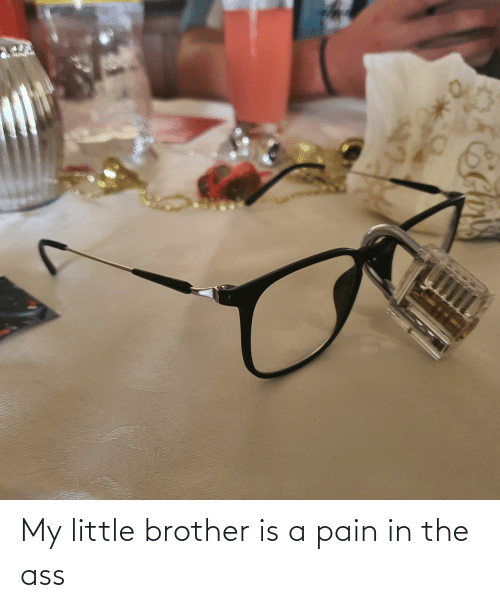 Little Brother: My little brother is a pain in the ass