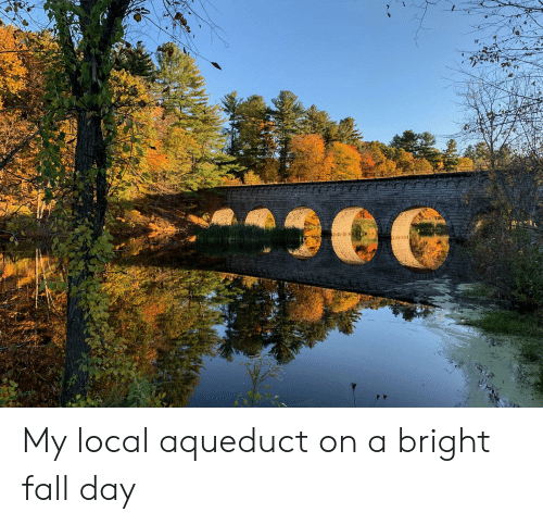 Fall, Local, and Day: My local aqueduct on a bright fall day