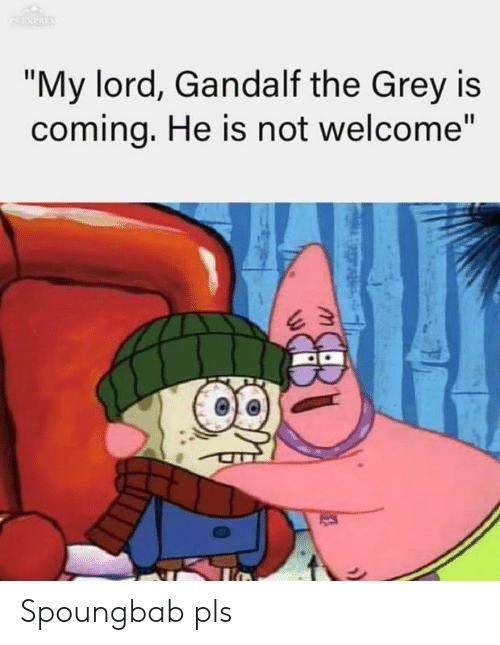 """Gandalf: """"My lord, Gandalf the Grey is  comina, He is not welcome"""" Spoungbab pls"""