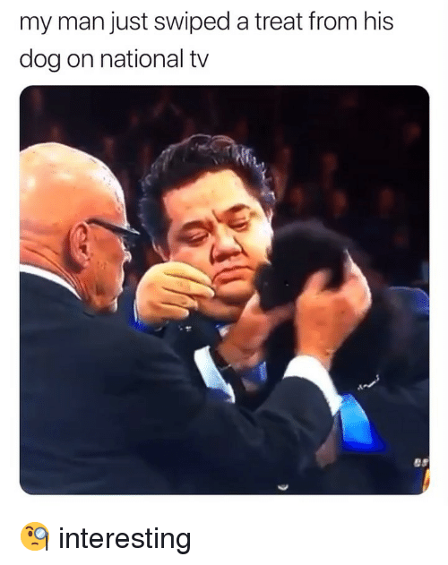 Memes, 🤖, and Dog: my man just swiped a treat from his  dog on national tv 🧐 interesting