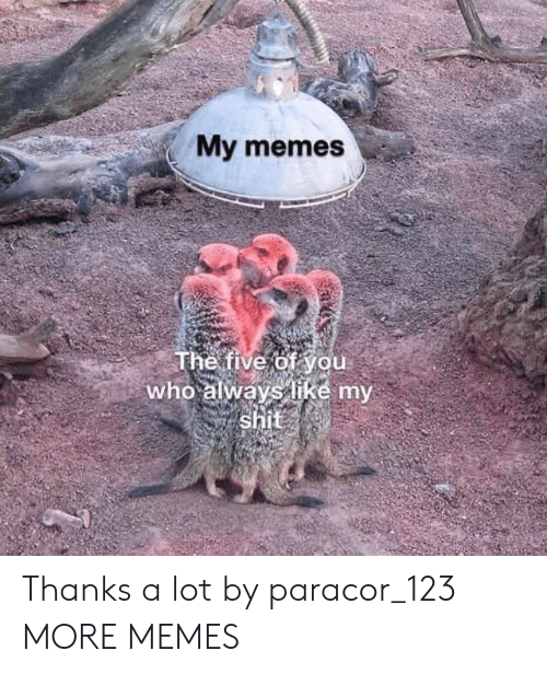 My Memes: My memes  The five of you  who always like my  shit Thanks a lot by paracor_123 MORE MEMES