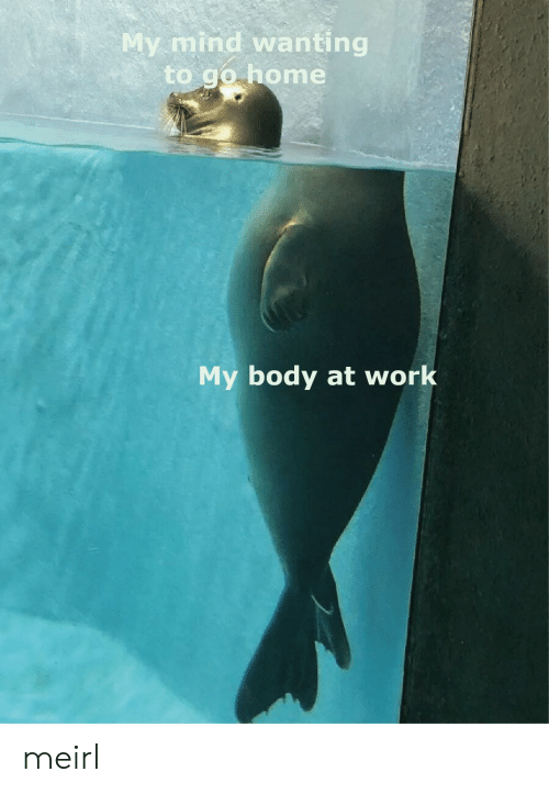 Work, Home, and Mind: My mind wanting  to go home  My body at work meirl