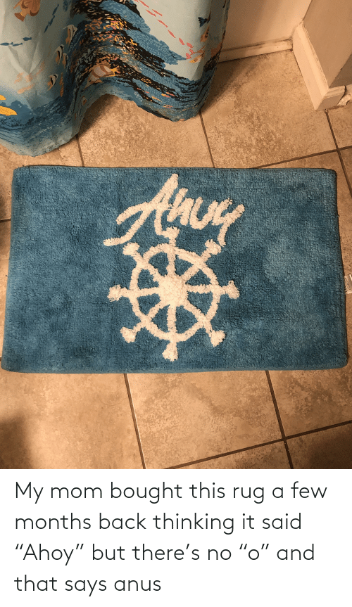 """a-few-months: My mom bought this rug a few months back thinking it said """"Ahoy"""" but there's no """"o"""" and that says anus"""