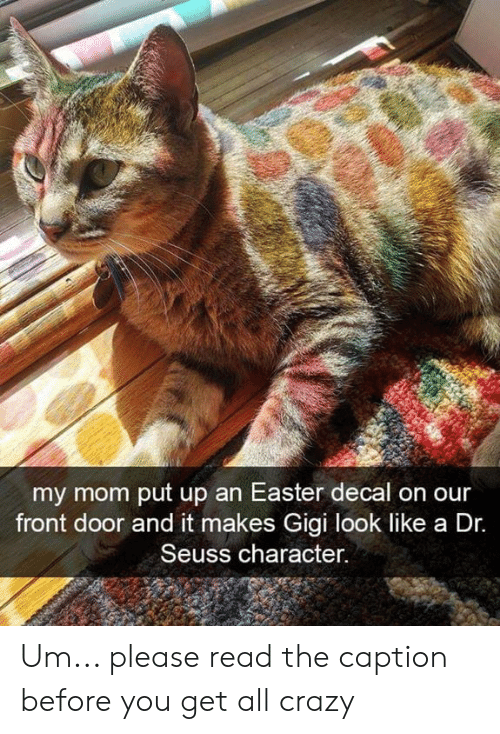 Crazy, Dr. Seuss, and Easter: my mom put up an Easter decal on our  front door and it makes Gigi look like a Dr.  Seuss character. Um... please read the caption before you get all crazy