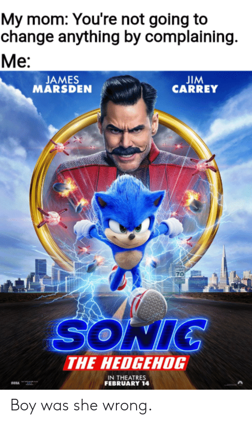 Hedgehog: My mom: You're not going to  change anything by complaining  Ме:  JIM  CARREY  JAMES  MARSDEN  PEE  70  SONIC  THE HEDGEHOG  IN THEATRES  FEBRUARY 14 Boy was she wrong.
