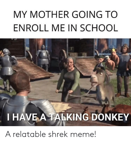 Donkey, Meme, and School: MY MOTHER GOING TO  ENROLL ME IN SCHOOL  I HAVE A TALKING DONKEY A relatable shrek meme!