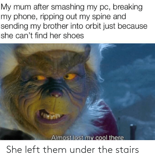 Just Because: My mum after smashing my pc, breaking  my phone, ripping out my spine and  sending my brother into orbit just because  she can't find her shoes  Almost lost my cool there.  tic She left them under the stairs