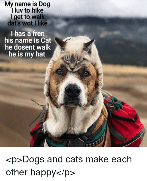 Cats, Dogs, and Happy: My name is Dog  I luv to hike  I get to walk  dat's wot I like  I has a fren  his name is Cat  he dosent walk  he is my hat <p>Dogs and cats make each other happy</p>