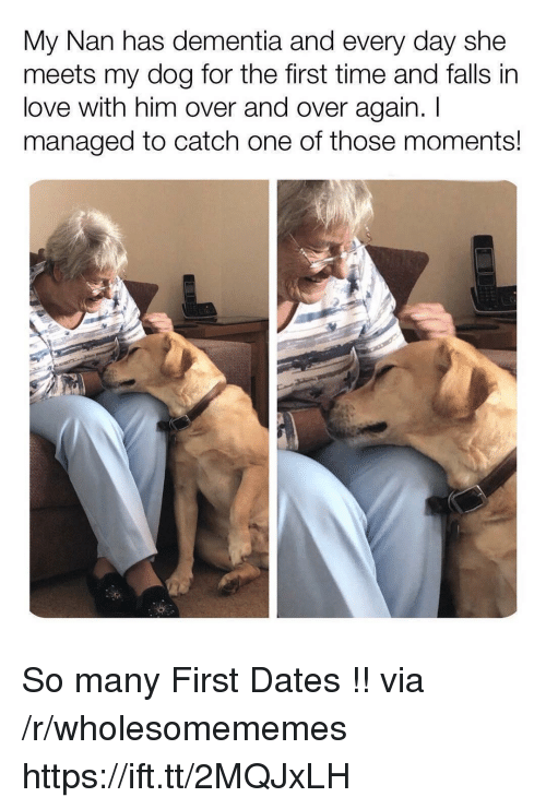 Love, Dementia, and Time: My Nan has dementia and every day she  meets my dog for the first time and falls in  love with him over and over again. I  managed to catch one of those moments! So many First Dates !! via /r/wholesomememes https://ift.tt/2MQJxLH