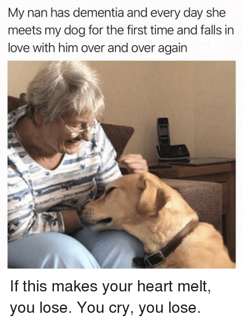 Love, Memes, and Dementia: My nan has dementia and every day she  meets my dog for the first time and falls in  love with him over and over again If this makes your heart melt, you lose. You cry, you lose.