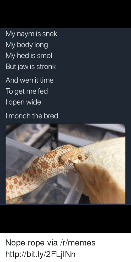 Memes, Http, and Time: My naym is snek  My body long  My hed is smol  But jaw is stronk  And wen it time  To get me fed  l open wide  I monch the bred Nope rope via /r/memes http://bit.ly/2FLjINn