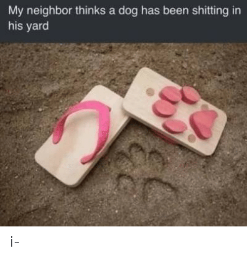 Dog Has: My neighbor thinks a dog has been shitting in  his yard i-