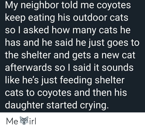 feeding: My neighbor told me coyotes  keep eating his outdoor cats  so I asked how many cats he  has and he said he just goes to  the shelter and gets a new cat  afterwards so I said it sounds  like he's just feeding shelter  cats to coyotes and then his  daughter started crying. Me🐺irl