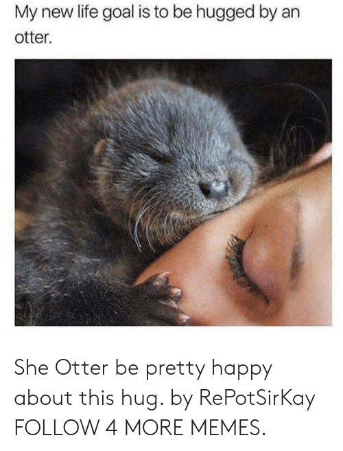 Life Goal: My new life goal is to be hugged by an  otter. She Otter be pretty happy about this hug. by RePotSirKay FOLLOW 4 MORE MEMES.